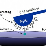 Principles of single moleculs force spectroscopy